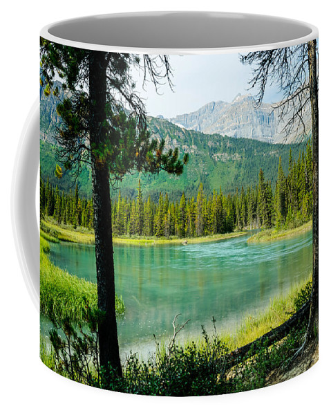 Alberta Coffee Mug featuring the photograph View Of Mistaya Between The Trees by Douglas Barnett