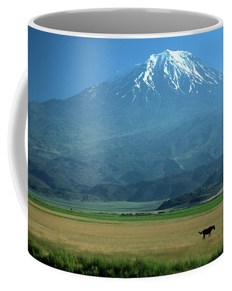 Anatolia Coffee Mug featuring the photograph View Of Mount Ararat In Turkey by Cagan H. Sekercioglu