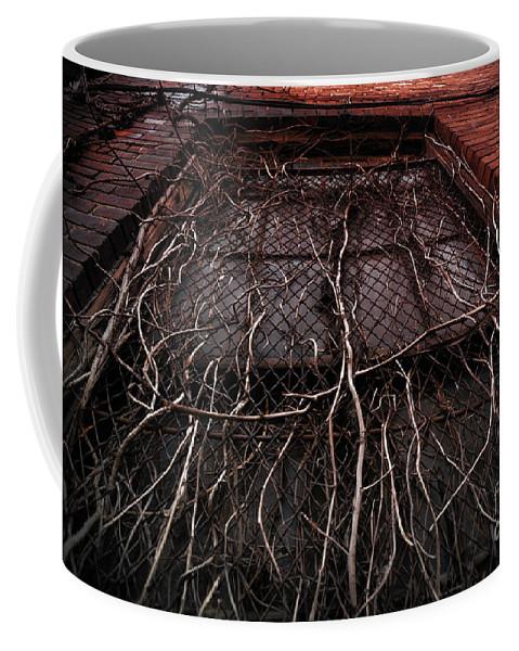 Abandoned Coffee Mug featuring the photograph Vine Of Decay 1 by Amy Cicconi