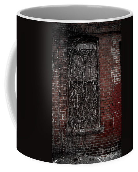 Abandoned Coffee Mug featuring the photograph Vines Of Decay by Amy Cicconi