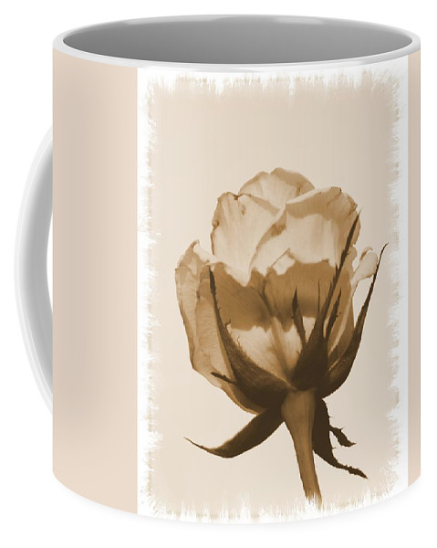 Vintage Rose 2013 Coffee Mug featuring the photograph Vintage Rose 2013 by Maria Urso