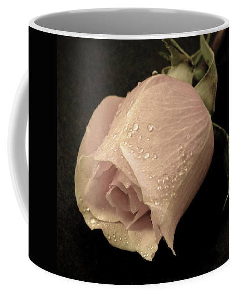 Rose Coffee Mug featuring the photograph Vintage Rose by Athena Mckinzie