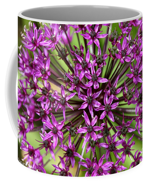 Flower Coffee Mug featuring the photograph Violet Fireworks by Susan Herber