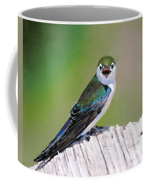 Birds Coffee Mug featuring the painting Violet Green Swallow by Dianna Ponting