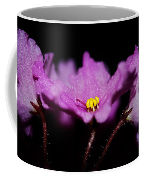 Violet Coffee Mug featuring the photograph Violet Prayers by Lisa Knechtel