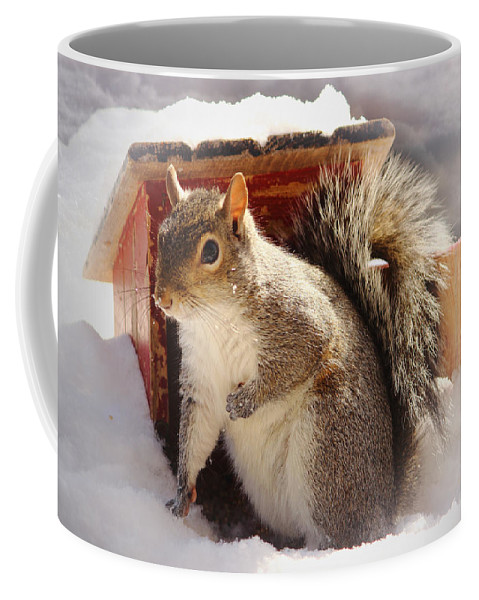 Squirrel Coffee Mug featuring the photograph Visiting The Outhouse by Karen Beasley