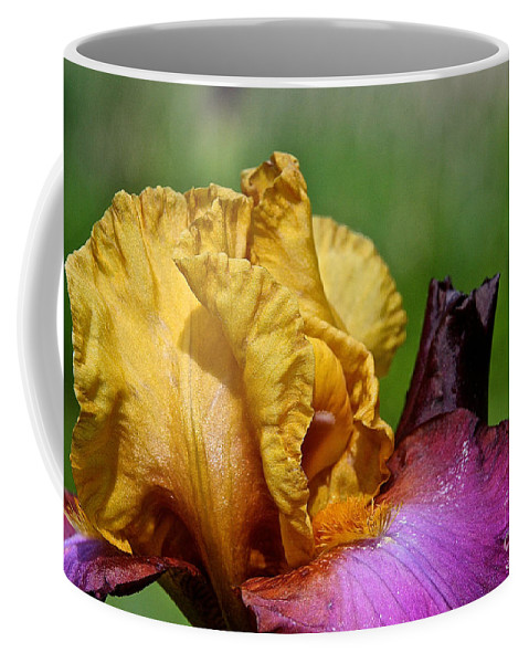 Flower Coffee Mug featuring the photograph Vivid June by Susan Herber