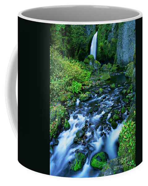 North America Coffee Mug featuring the photograph Wachlella Falls Columbia River Gorge National Scenic Area Oregon by Dave Welling