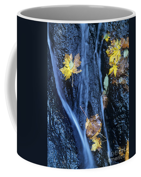 North America Coffee Mug featuring the photograph Wachlella Falls Detail Columbia River Gorge by Dave Welling