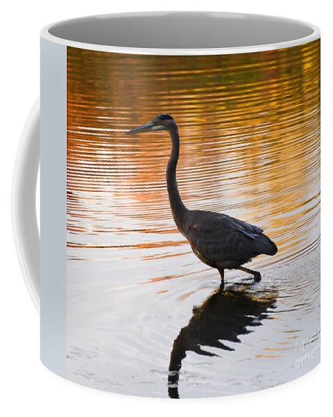 Blue Heron Coffee Mug featuring the photograph Wading For You by Judy Wolinsky