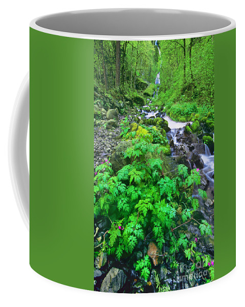 North America Coffee Mug featuring the photograph Wahkeena Falls In The Columbia River Gorge by Dave Welling