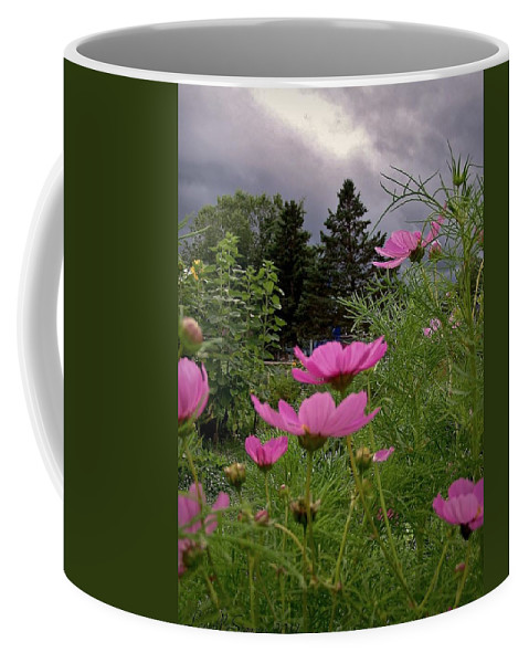 Cosmos Plants Coffee Mug featuring the photograph Waiting For Rain by Lowell Stevens