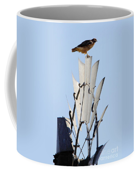 Animal Coffee Mug featuring the photograph Waiting For The Wind by Robert Frederick