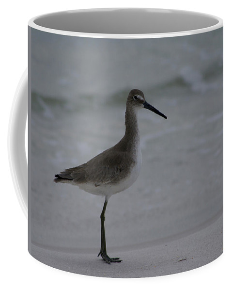 Digital Photograph Coffee Mug featuring the photograph Waiting On The Shoreline by Laurie Pike