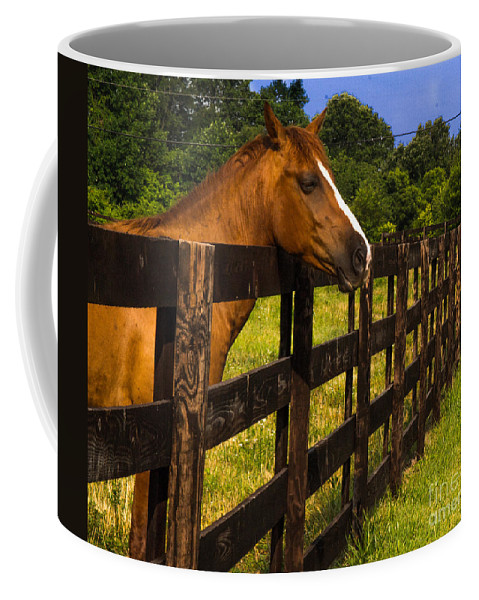 Wait Coffee Mug featuring the photograph Waiting Patiently by Scott Hervieux