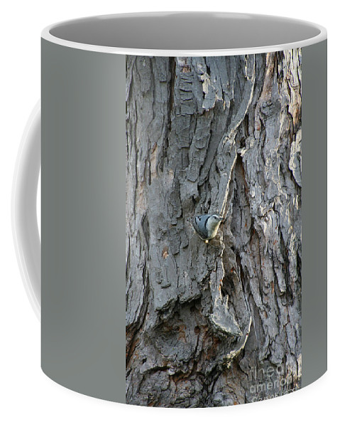 Outdoors Coffee Mug featuring the photograph Waldo by Susan Herber