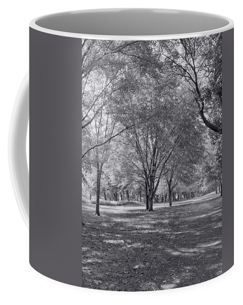 Landscape Coffee Mug featuring the photograph Walk In The Park by Kim Hojnacki