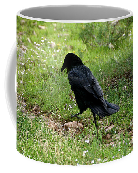 Raven Coffee Mug featuring the photograph Walk This Way by Susan Herber