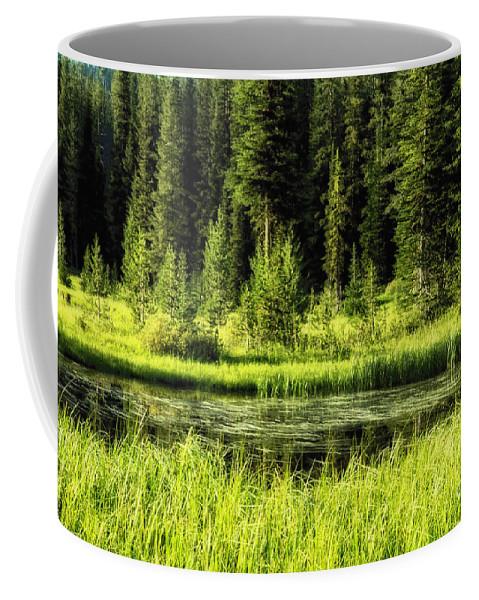 Wallowa Coffee Mug featuring the photograph Wallowas - No. 9 by Belinda Greb