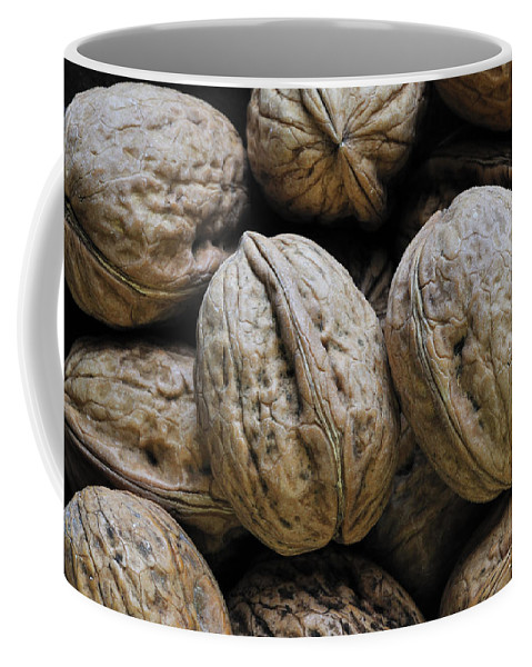 Common Walnut Coffee Mug featuring the photograph Walnoot 4 by Arterra Picture Library