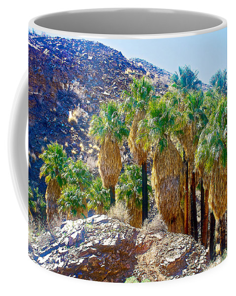 Washingtonian Fan Palm Grove Along Lower Palm Canyon Trail In Indian Canyons Near Palm Springs Coffee Mug featuring the photograph Washingtonian Fan Palm Grove Along Lower Palm Canyon Trail Near Palm Springs-california by Ruth Hager