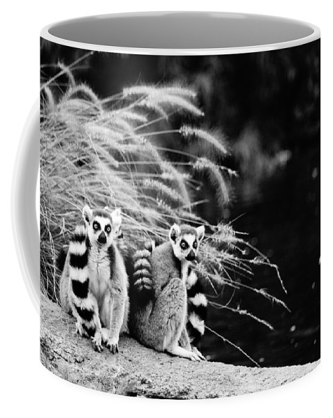 Bill Pevlor Coffee Mug featuring the photograph Watch Out For The Duck by Bill Pevlor