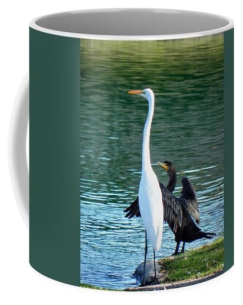 Heron Coffee Mug featuring the photograph Watch This by Deb Halloran