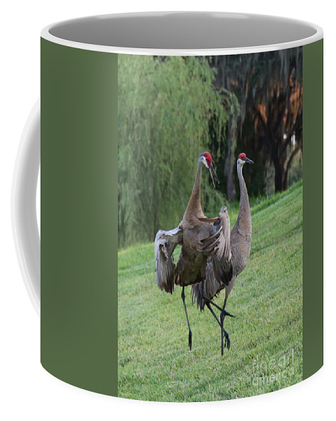 Sandhill Cranes Coffee Mug featuring the photograph Watch Your Parents by Carol Groenen