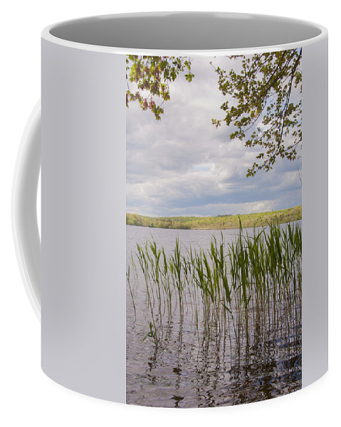 Photography Coffee Mug featuring the photograph Watchaug Pond by Steven Natanson