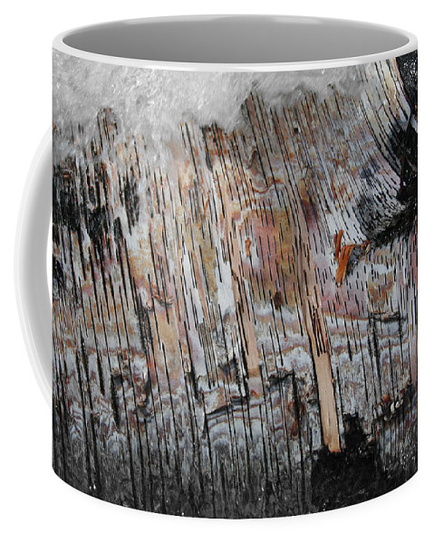 Birch Tree Coffee Mug featuring the photograph Water And Birch by Dylan Punke