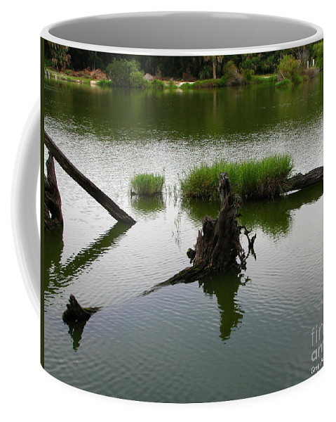 Art For The Wall...patzer Photography Coffee Mug featuring the photograph Water Art by Greg Patzer