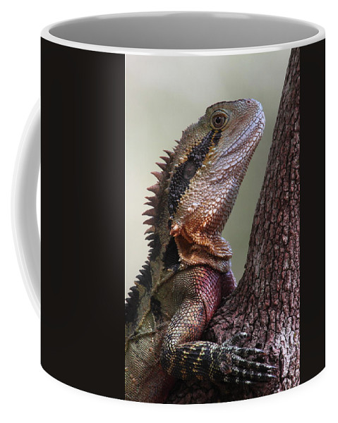 Water Coffee Mug featuring the photograph Water Dragon by Bruce J Robinson