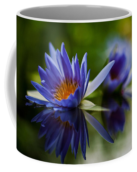 Lily Coffee Mug featuring the photograph Water Lily Reflections by Mike Reid