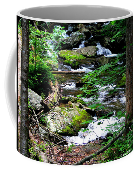 Patzer Coffee Mug featuring the photograph Water Shed by Greg Patzer