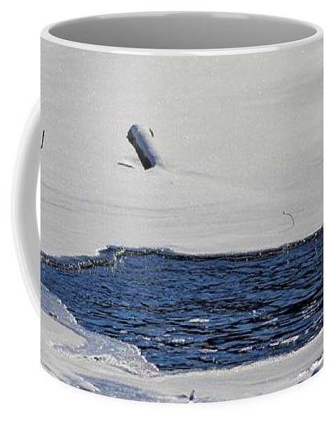 Water Coffee Mug featuring the photograph Water Trail by Bonfire Photography