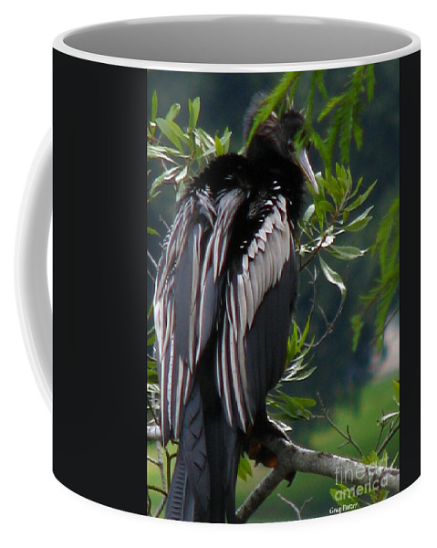 Patzer Coffee Mug featuring the photograph Water Turkey by Greg Patzer