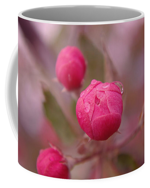 Droplets Coffee Mug featuring the photograph Waterdrops Before Blooming by Jeff Swan