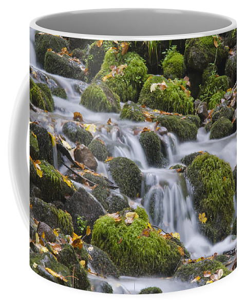 Anatolia Coffee Mug featuring the photograph Waterfall by Ayhan Altun
