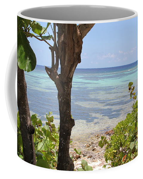 Water Coffee Mug featuring the photograph Waters Edge by Carey Chen