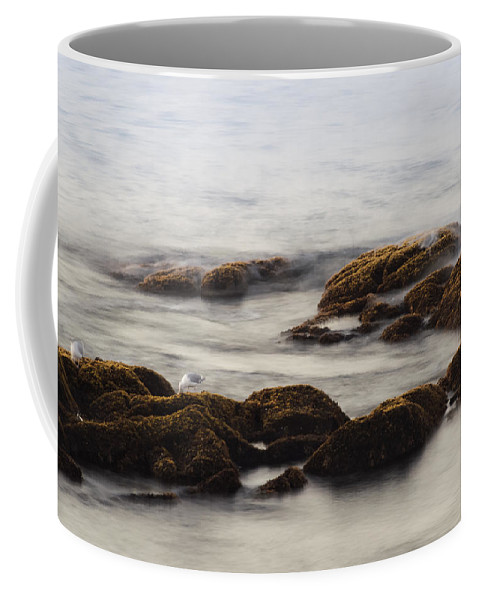 Rockport Coffee Mug featuring the photograph Waves And Rocks by David Stone