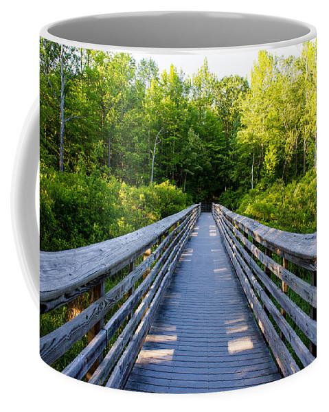 Bridge Coffee Mug featuring the photograph Way To Wilderness by Gaurav Singh