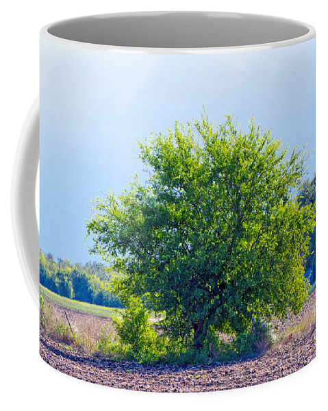 Light Coffee Mug featuring the photograph We Are Light by Gary Richards