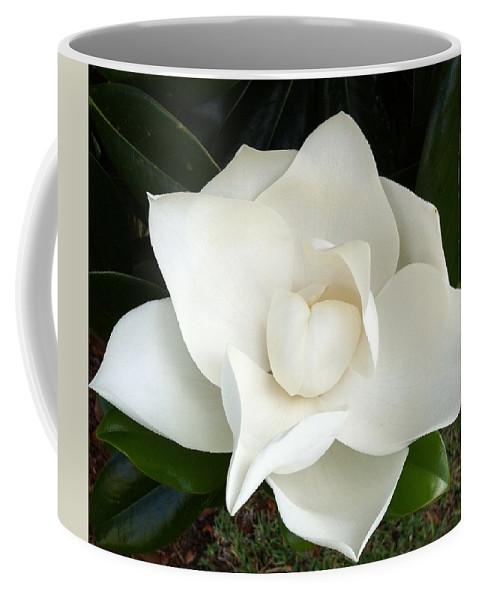 Magnolia Coffee Mug featuring the photograph Wedding Day by Marian Palucci-Lonzetta