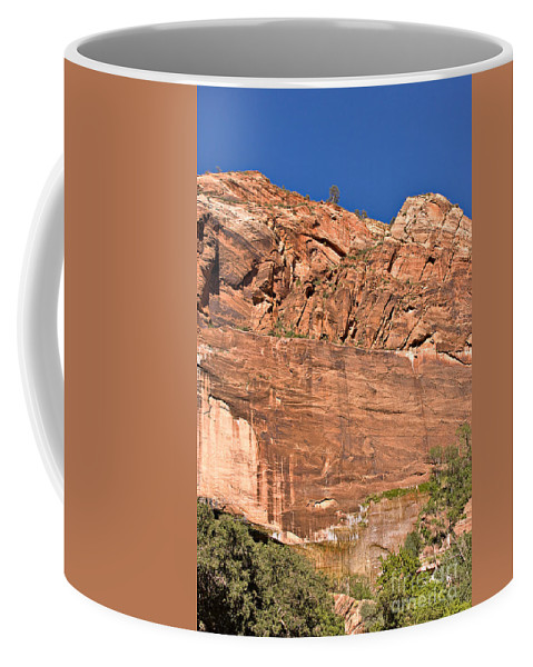 Travel Coffee Mug featuring the photograph Weeping Rock In Zion National Park by Louise Heusinkveld
