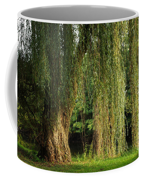Weeping Willow Coffee Mug featuring the photograph Weeping Willow by Gary Richards
