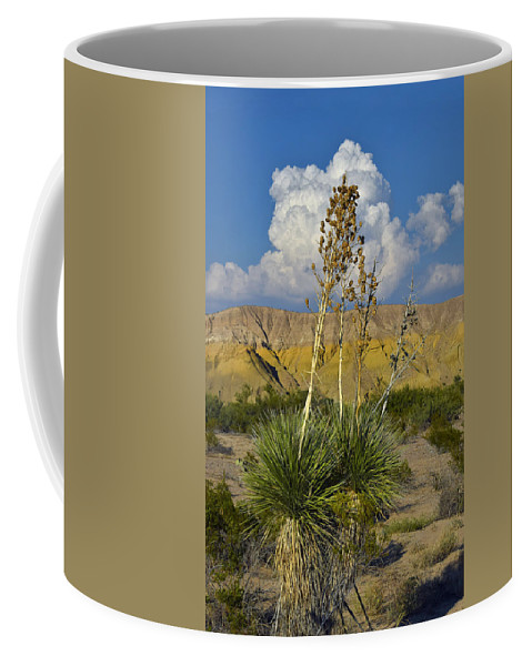 Weishaupt Coffee Mug featuring the photograph Weishaupt by Skip Hunt