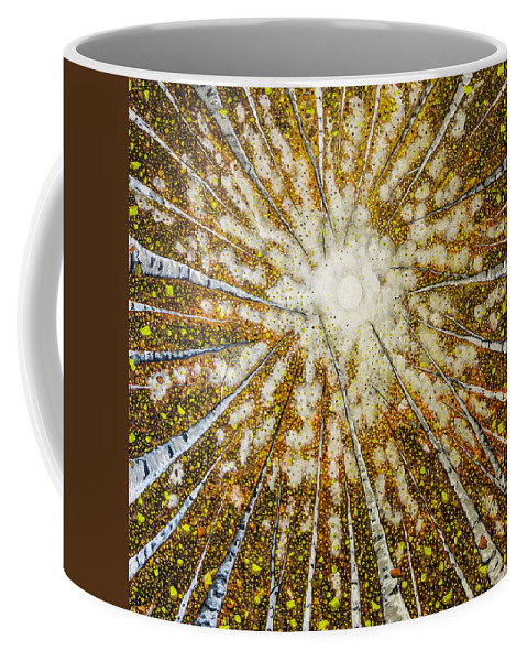Trees Coffee Mug featuring the painting Welcome Home by Joel Tesch