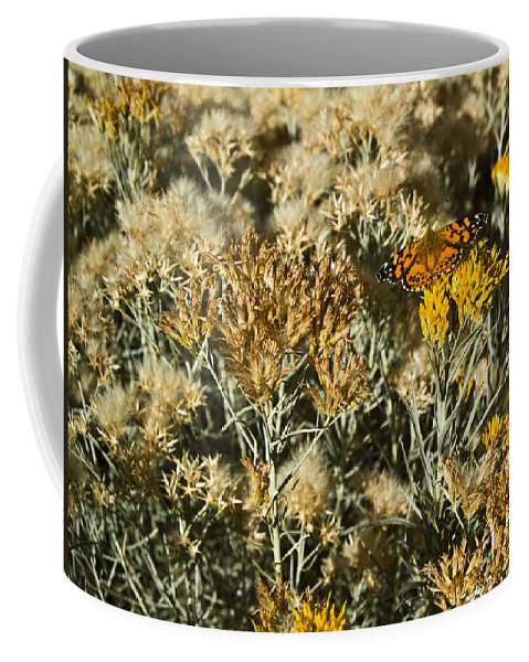 West Coffee Mug featuring the photograph West Goast Lady Vanessa Annabella 3 by Douglas Barnett
