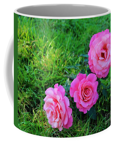 Wet Bloomers Coffee Mug featuring the photograph Wet Bloomers by Barbara Griffin