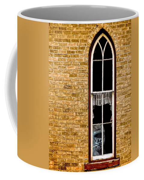 Church Coffee Mug featuring the photograph What 800 Lbs Gorilla by Steve Harrington